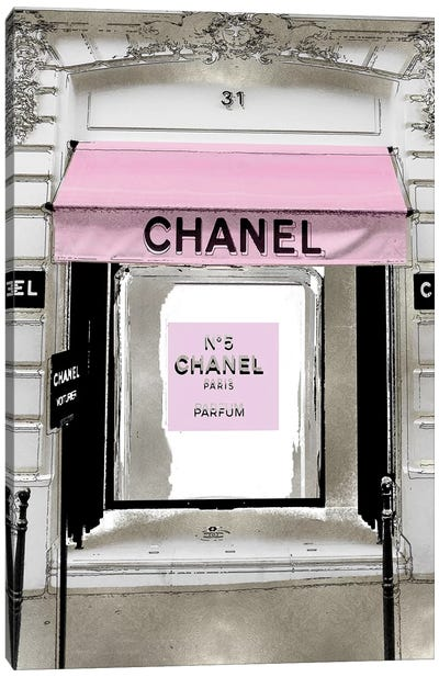Designer Entrance with Pink Canvas Art Print