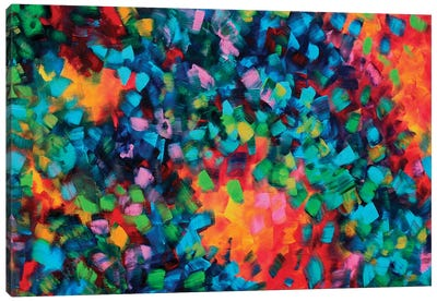 Color Blast Canvas Art Print