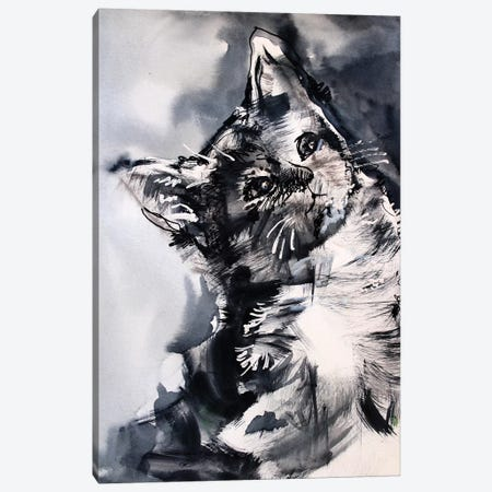 The Cat 3-Piece Canvas #MDP65} by Marina Del Pozo Canvas Art
