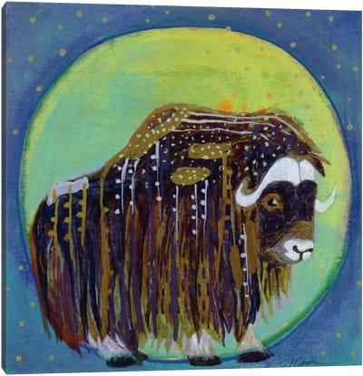 Muskox Moon Canvas Art Print