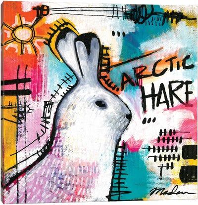 Alpha Hare Canvas Art Print