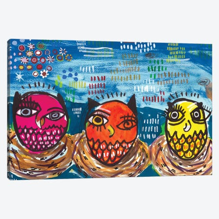 Three Little Owls Canvas Print #MDR65} by Madara Mason Canvas Wall Art