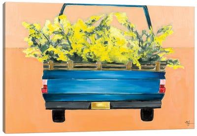 Acacia Truck Canvas Art Print