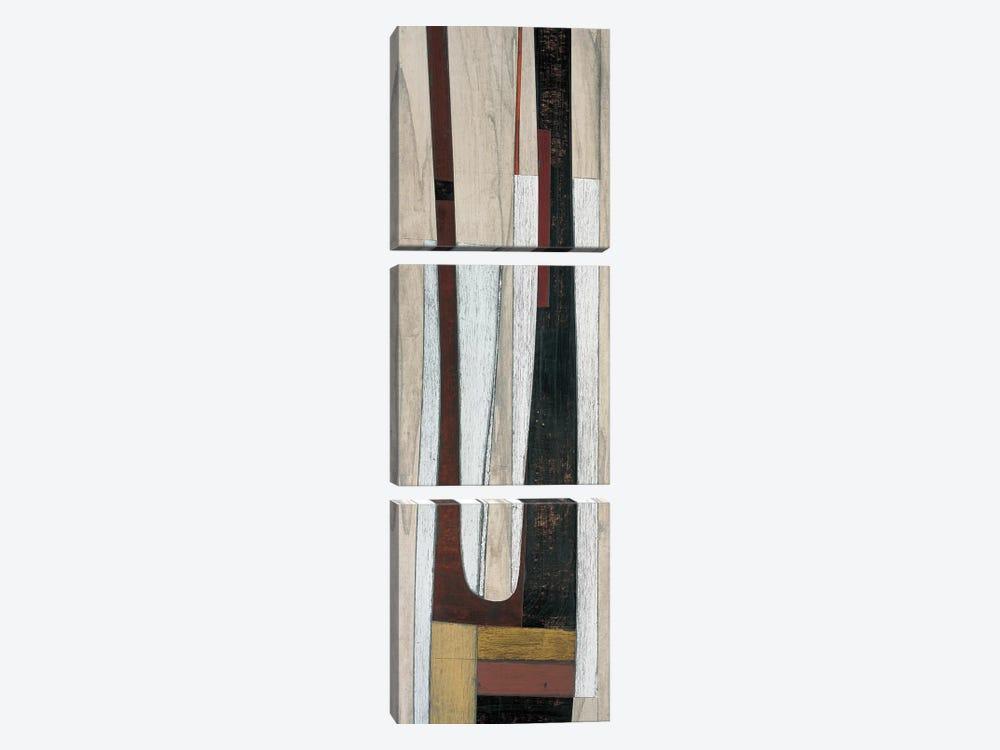 Triad III by Matias Duarte 3-piece Canvas Art Print