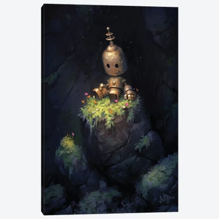 Secret Garden Canvas Print #MDX15} by Matt Dixon Art Print