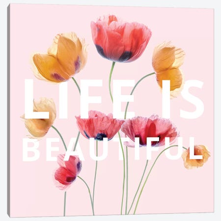 Life is Beautiful Canvas Print #MDY20} by Mandy Disher Canvas Wall Art