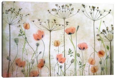 Poppy Meadow Canvas Art Print