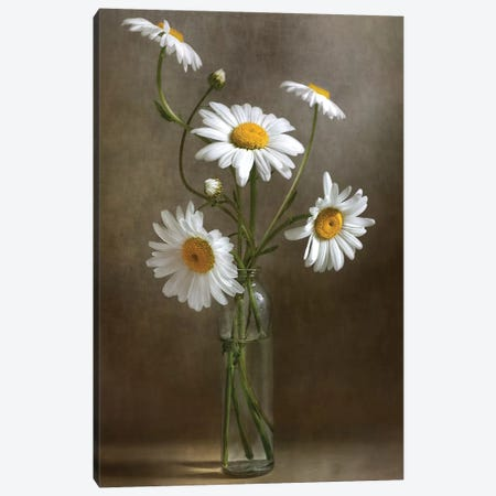 Still Life I 3-Piece Canvas #MDY8} by Mandy Disher Canvas Artwork