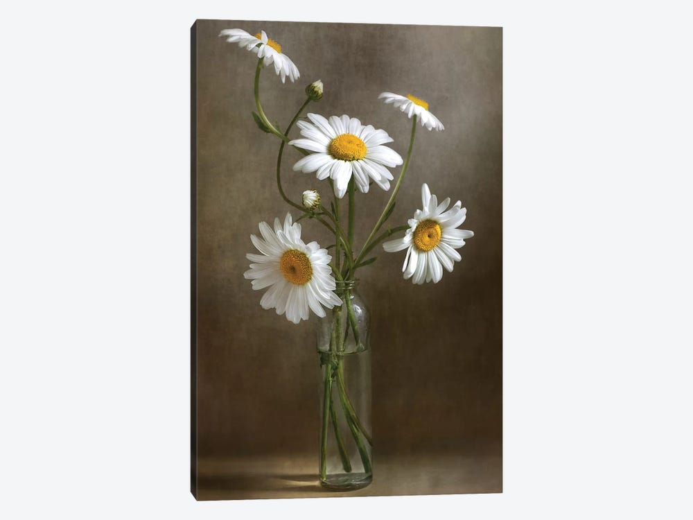 Still Life I by Mandy Disher 1-piece Canvas Wall Art