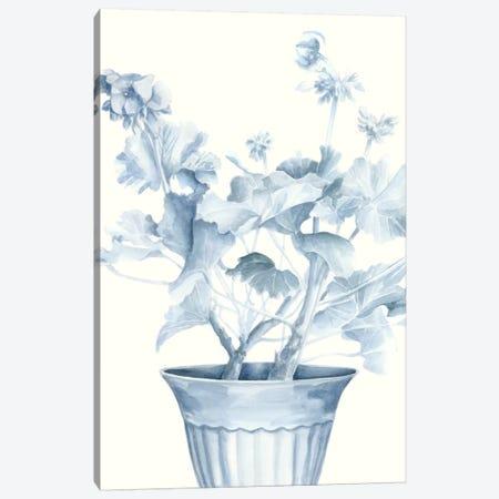 Blue Geranium II Canvas Print #MEA10} by Megan Meagher Canvas Art
