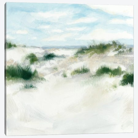 White Sands I Canvas Print #MEA20} by Megan Meagher Art Print