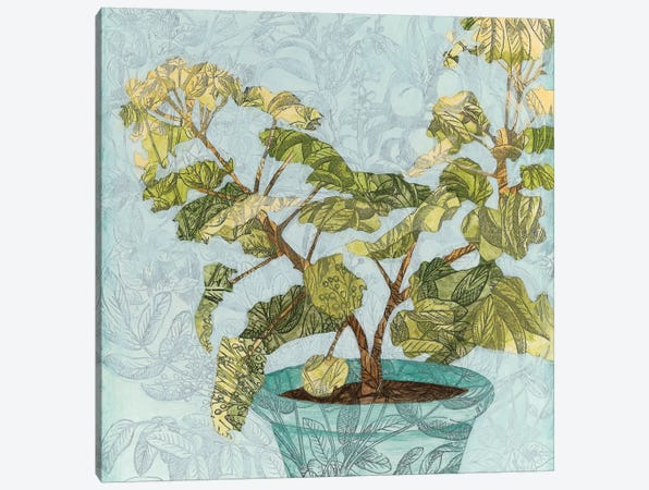 Conservatory Collage II Canvas Print #MEA29} by Megan Meagher Art Print