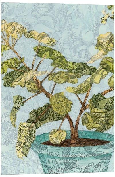 Conservatory Collage II Canvas Art Print