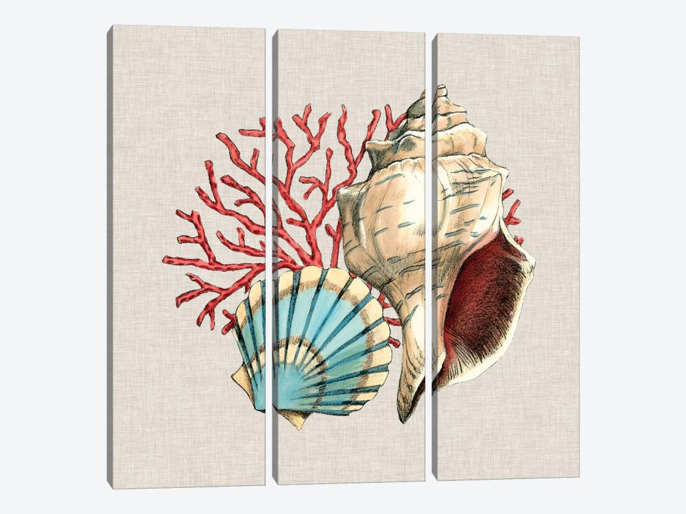 By The Seashore II by Megan Meagher 3-piece Art Print