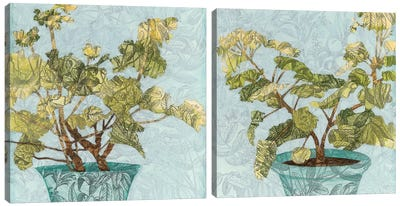 Conservatory Collage Diptych Canvas Art Print