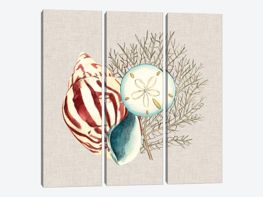 By The Seashore III by Megan Meagher 3-piece Canvas Wall Art