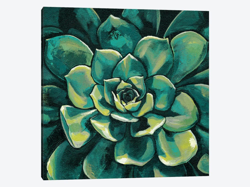 Succulent Bloom I by Megan Meagher 1-piece Canvas Art