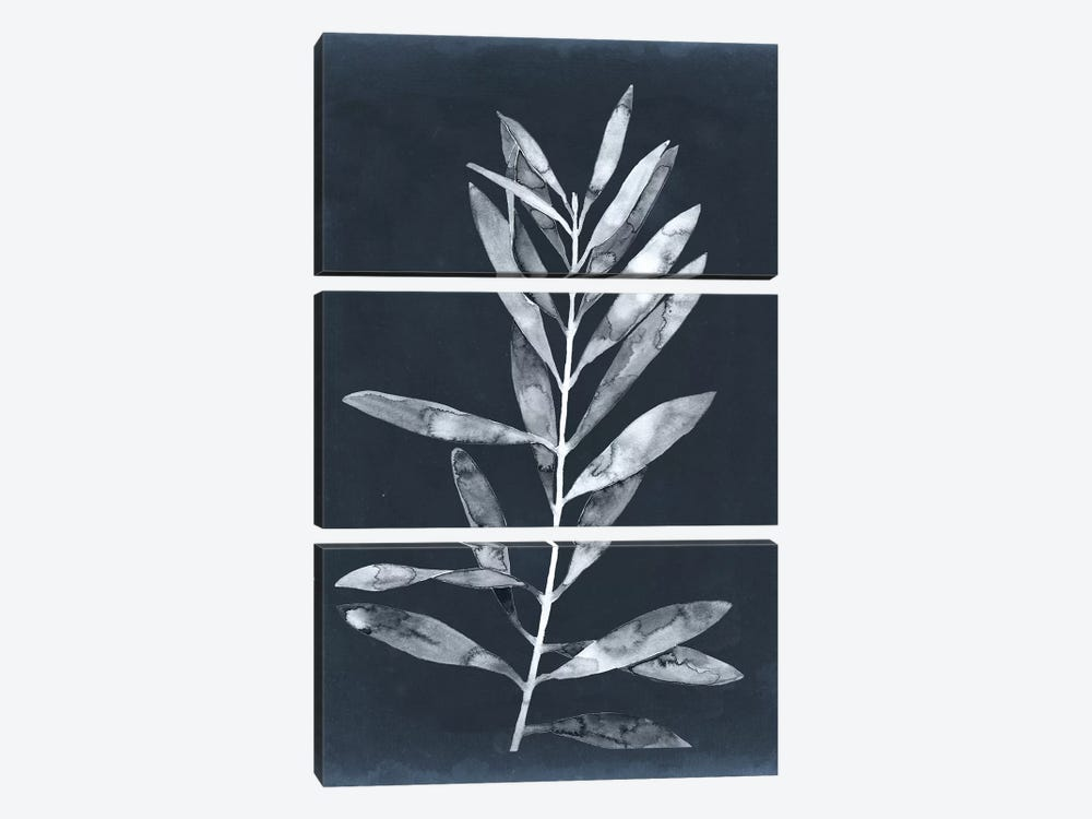 Midnight Leaves I by Megan Meagher 3-piece Canvas Wall Art
