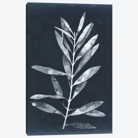 Midnight Leaves I 3-Piece Canvas #MEA46} by Megan Meagher Canvas Art