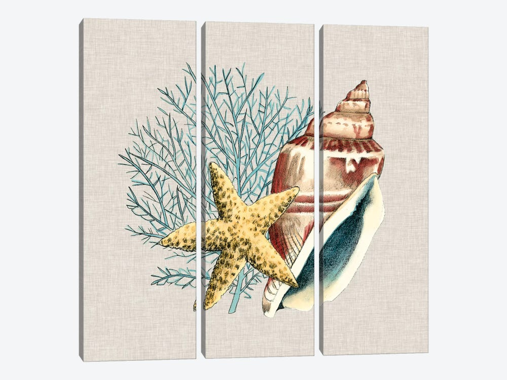 By The Seashore IV by Megan Meagher 3-piece Canvas Print