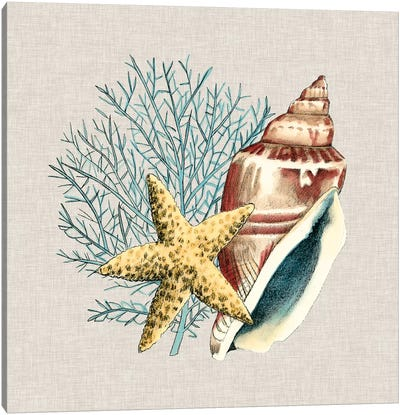 By The Seashore IV Canvas Art Print