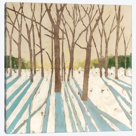 Winter Shadows I Canvas Print #MEA52} by Megan Meagher Canvas Art