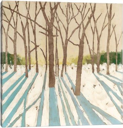 Winter Shadows I Canvas Art Print