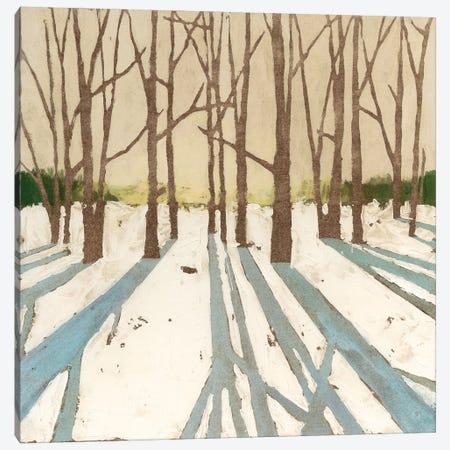 Winter Shadows II 3-Piece Canvas #MEA53} by Megan Meagher Canvas Wall Art