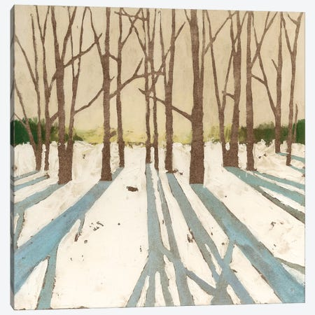 Winter Shadows II Canvas Print #MEA53} by Megan Meagher Canvas Wall Art