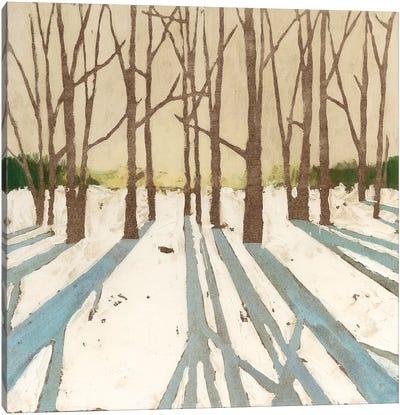 Winter Shadows II Canvas Art Print