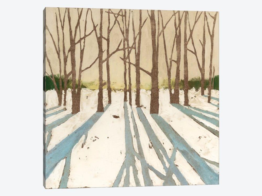 Winter Shadows II by Megan Meagher 1-piece Canvas Wall Art