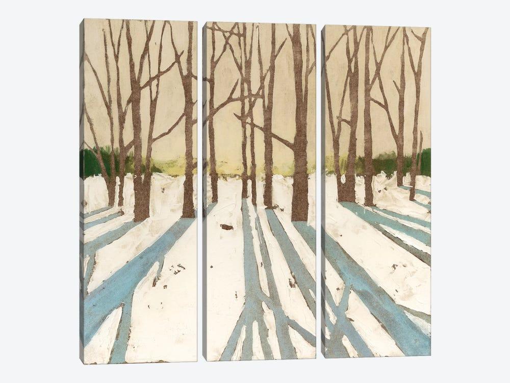 Winter Shadows II by Megan Meagher 3-piece Canvas Wall Art