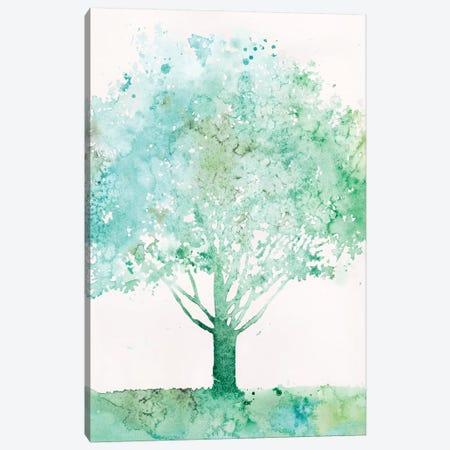 Aquamarine Tree I Canvas Print #MEA54} by Megan Meagher Art Print