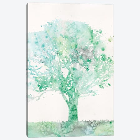 Aquamarine Tree II Canvas Print #MEA55} by Megan Meagher Canvas Print
