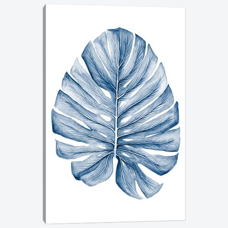 Indigo Tropical Leaves I Canvas Print #MEA56} by Megan Meagher Canvas Art Print