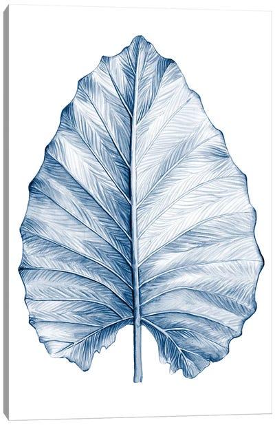 Indigo Tropical Leaves III Canvas Art Print