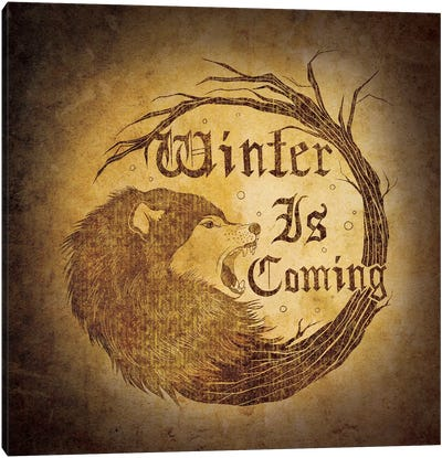 House Stark - Winter is Coming Canvas Print #MEB8