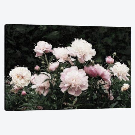 Peony Poetry II Canvas Print #MEC129} by Marie Elaine Cusson Canvas Wall Art