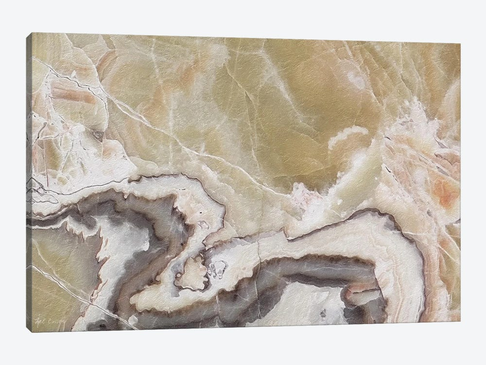 Marble Colors Brown V by Marie Elaine Cusson 1-piece Canvas Artwork