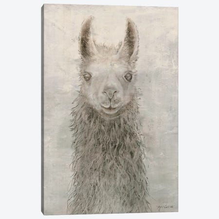 Llama Portrait Canvas Print #MEC17} by Marie-Elaine Cusson Canvas Print