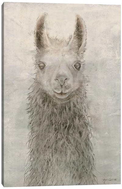 Llama Portrait Canvas Art Print