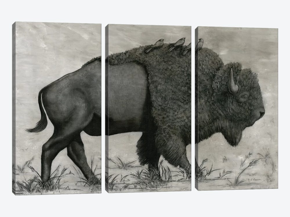 Basking Buffalo by Marie Elaine Cusson 3-piece Art Print