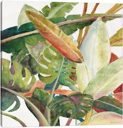 Tropical Lush Garden Square II Canvas Art Print