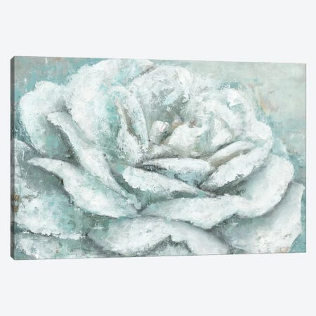 White Rose Splendor Canvas Print #MEC70} by Marie-Elaine Cusson Canvas Art