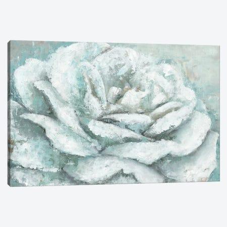White Rose Splendor Canvas Print #MEC70} by Marie Elaine Cusson Canvas Art