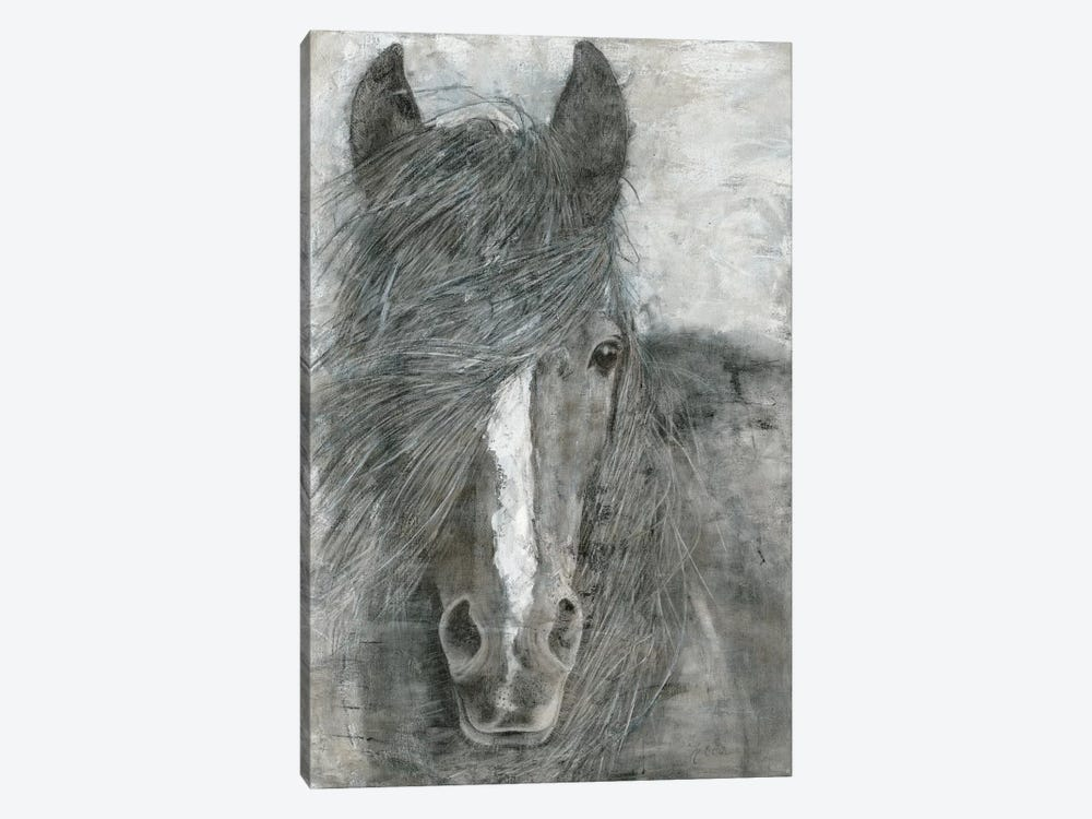 Horse in the Wind by Marie Elaine Cusson 1-piece Canvas Art