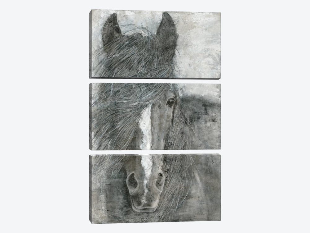 Horse in the Wind by Marie Elaine Cusson 3-piece Canvas Artwork
