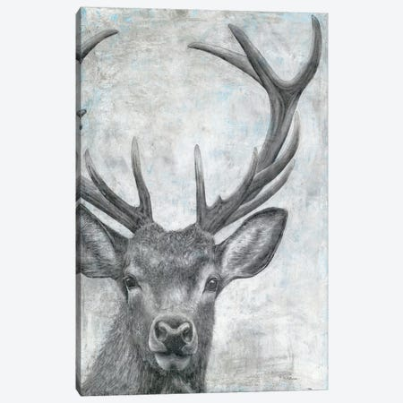 Portrait of a Deer Canvas Print #MEC74} by Marie Elaine Cusson Art Print