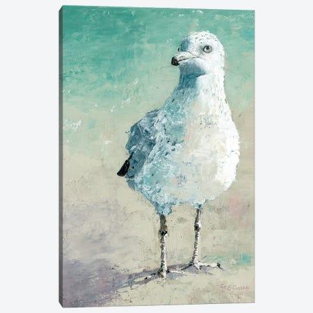 Beach Bird II Canvas Print #MEC76} by Marie Elaine Cusson Canvas Art Print