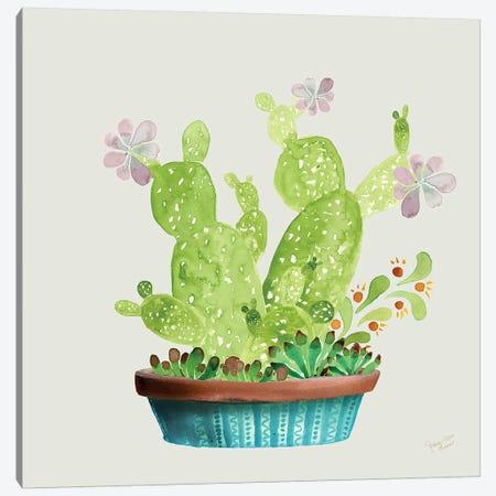Succulent Symphony III Canvas Print #MEC88} by Marie Elaine Cusson Canvas Print